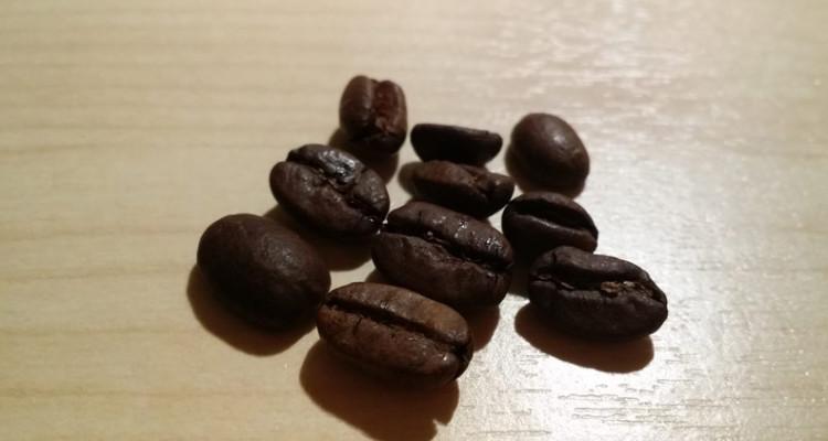 Katzenkaffee Kopi Luwak Kaffeebohnen